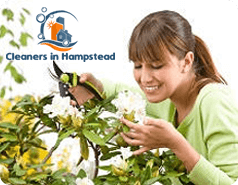 Gardening Services Hampstead